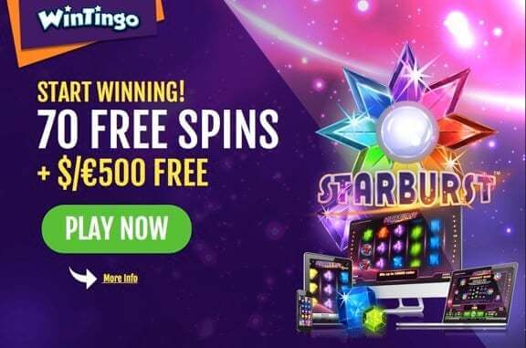 Exclusive offer from WinTingo Casino
