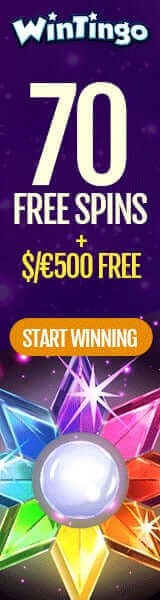 70 Free Spins by Wintingo (Netent Casino)